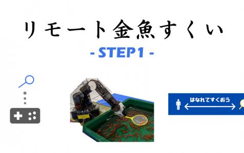リモート金魚すくい(2020年~)